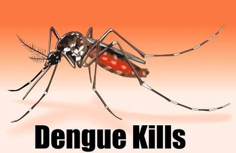 dengue virus prevention